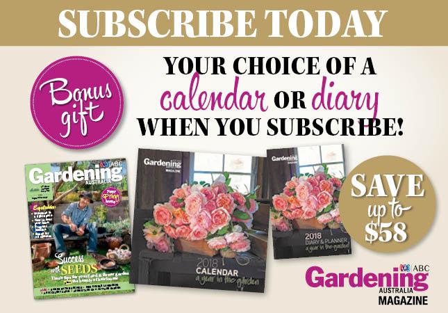 Bonus Gift - Calendar or diary choice