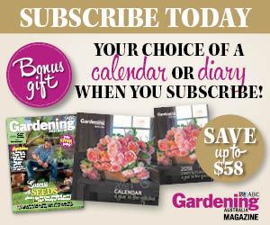 Bonus Gift - Your choice of a calendar or diary