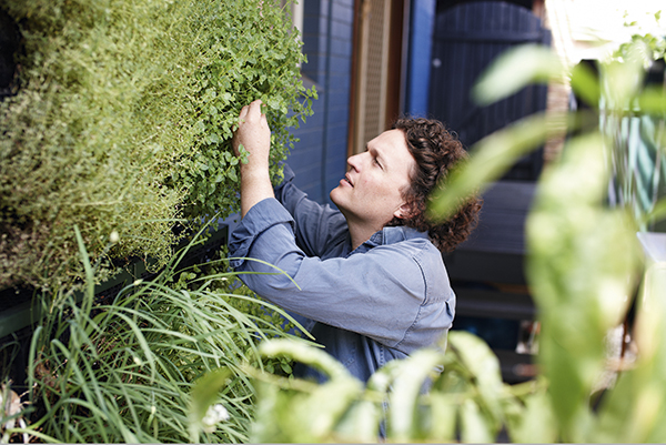 Growing food in small spaces - Gardening Australia