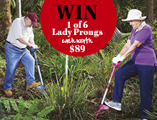 Win a Lady Prong!