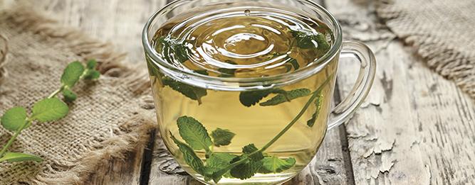 5 ways with mint