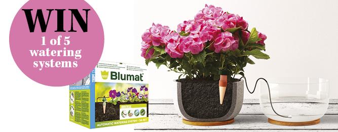 Win a Blumat watering system