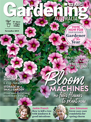 Cover issue Nov 2018