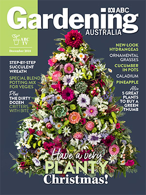 Cover issue Dec 2018