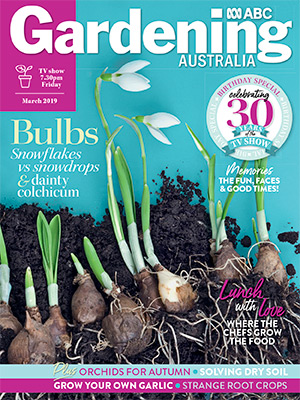 Cover issue March 2019