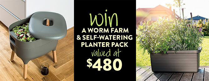Win a worm farm and self-watering planter pack