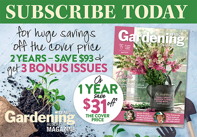 Subscribe Today issue April 2019