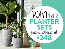 Win a planter set