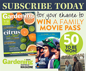 Subscribe to Win Family Movies Pass
