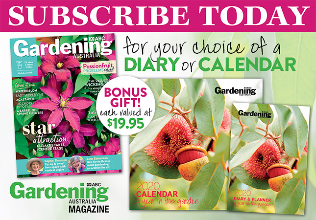 Subscribe for your choice of Diary or Calendar