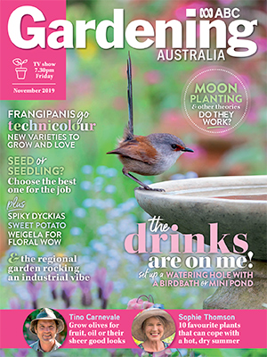 Cover November 2019 issue
