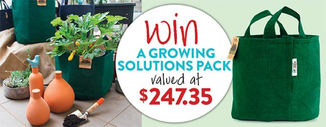 Win ollas and grow bags