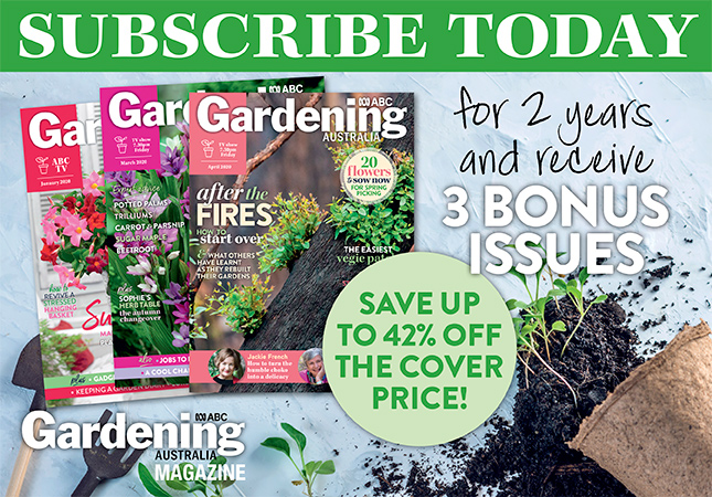Subscribe to April 2020 issue