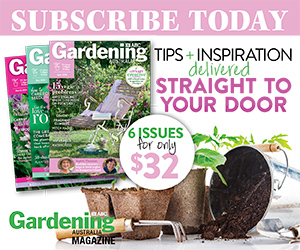 Subscribe to June 2020 issue