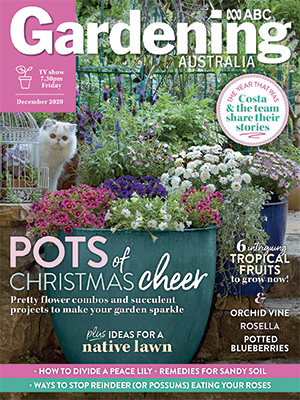 Cover December 2020