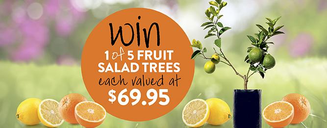 Win a Fruit Salad Tree