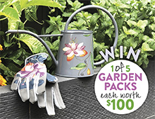 Win a watering can and gardening gloves