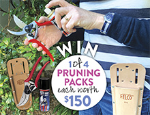 Win a pruning pack - June