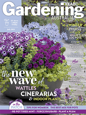 July 2021 Issue Cover