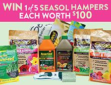 Win a Seasol Hamper